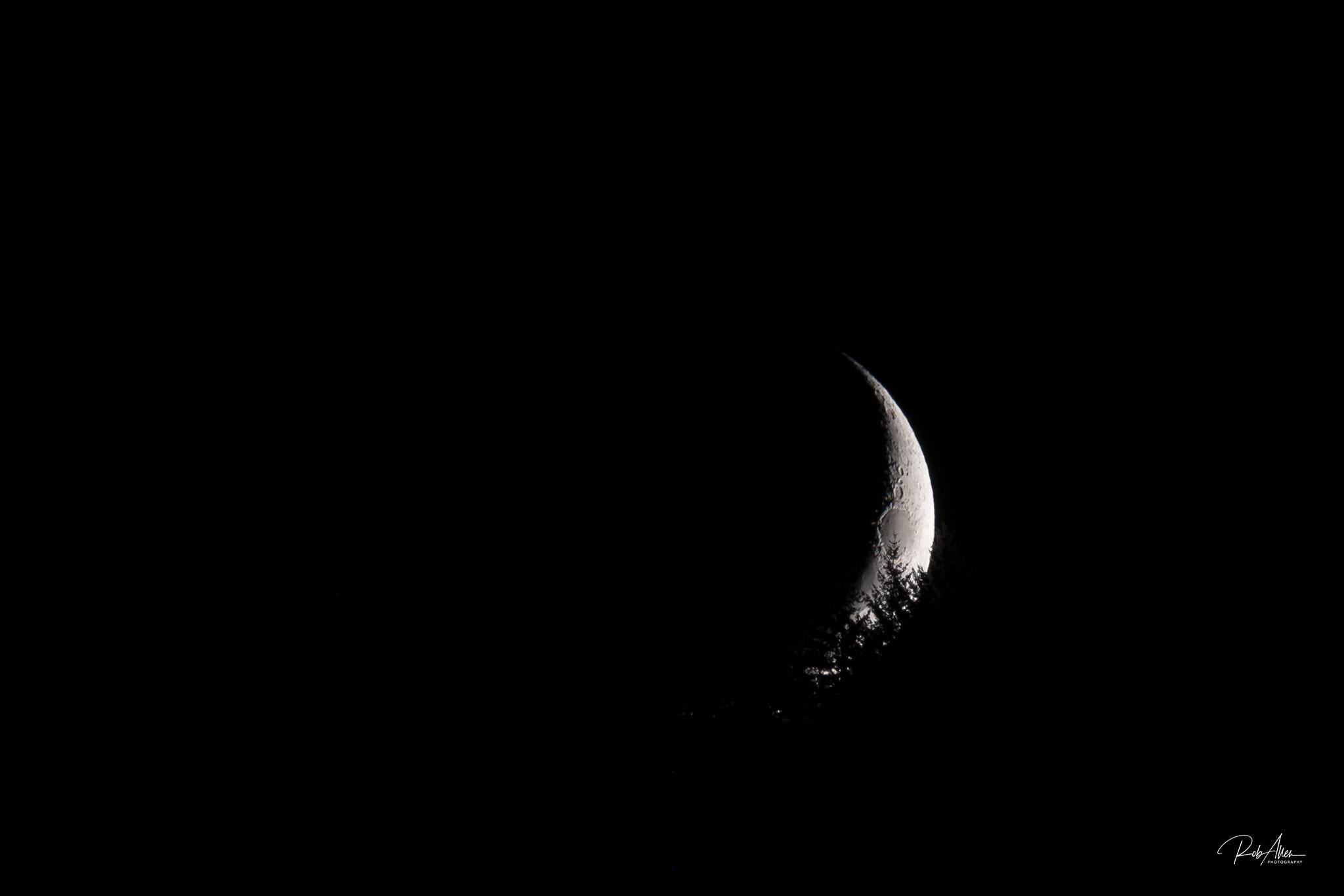 20191001_MoonForest-5826