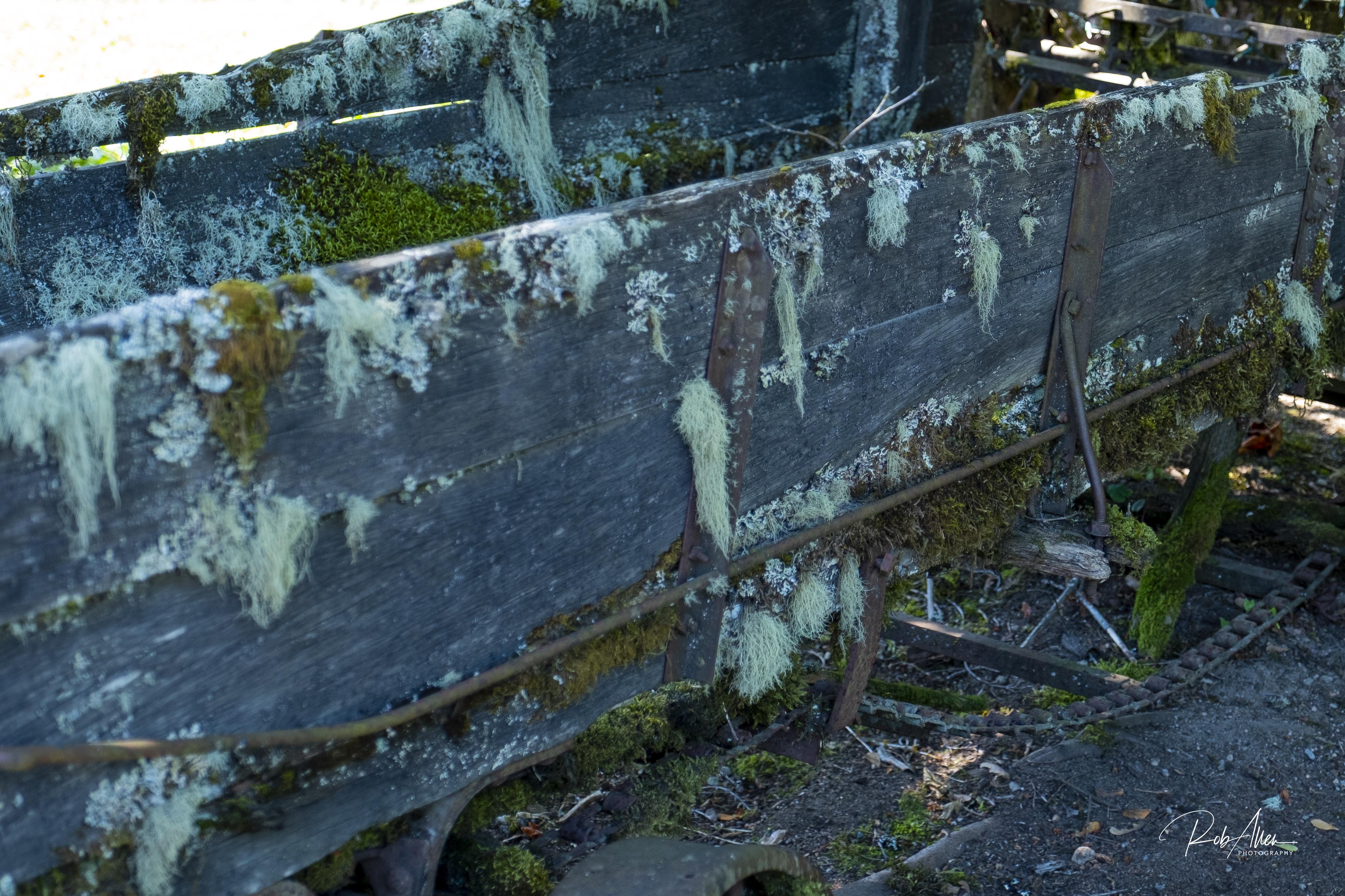 Hood's Mossy Wagon